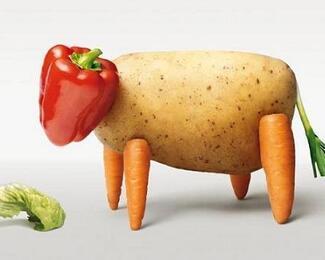 Быть или не быть? Пять советов тому, кто решил стать вегетарианцем