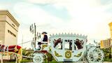 Свадебная карета Свадебная карета Шымкент фото
