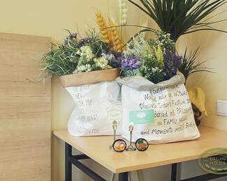 Organic House: с любовью из Южной Кореи
