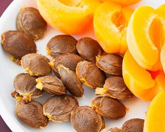 Перемываем косточки фруктам: можно ли кушать семена?
