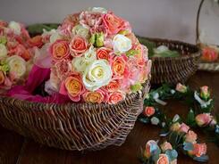 Голландский цветочник: мы дарим красоту и праздник