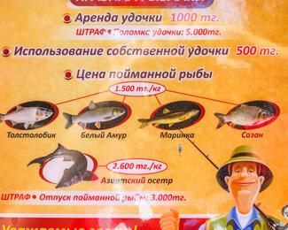 Время рыбачить! Правила для рыбаков в зоне отдыха «Сауран»
