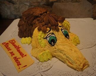 Тортики, пирожные и детские комплексы в Visit