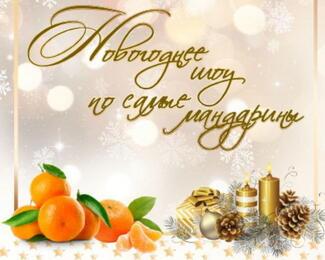 Новогоднее шоу в ресторане «Меруерт»!