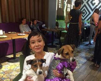 Шоу дрессированных собачек от кафе «Хомяк»